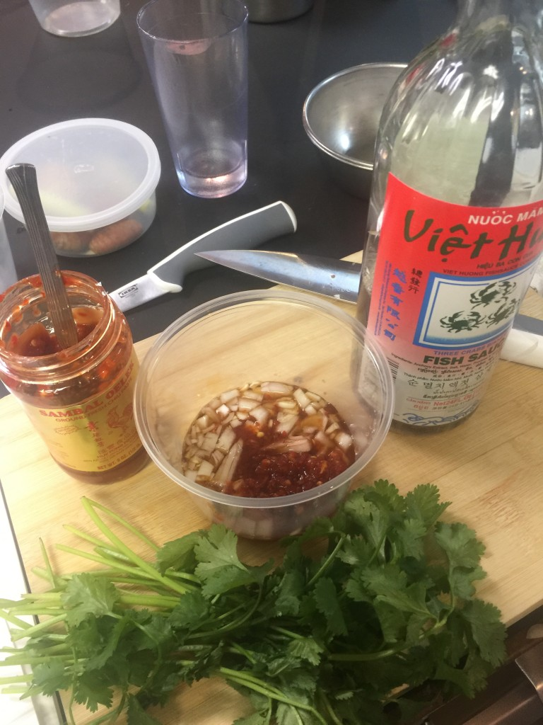 Flank Steak Marinade with cilantro, lime, and thai spices