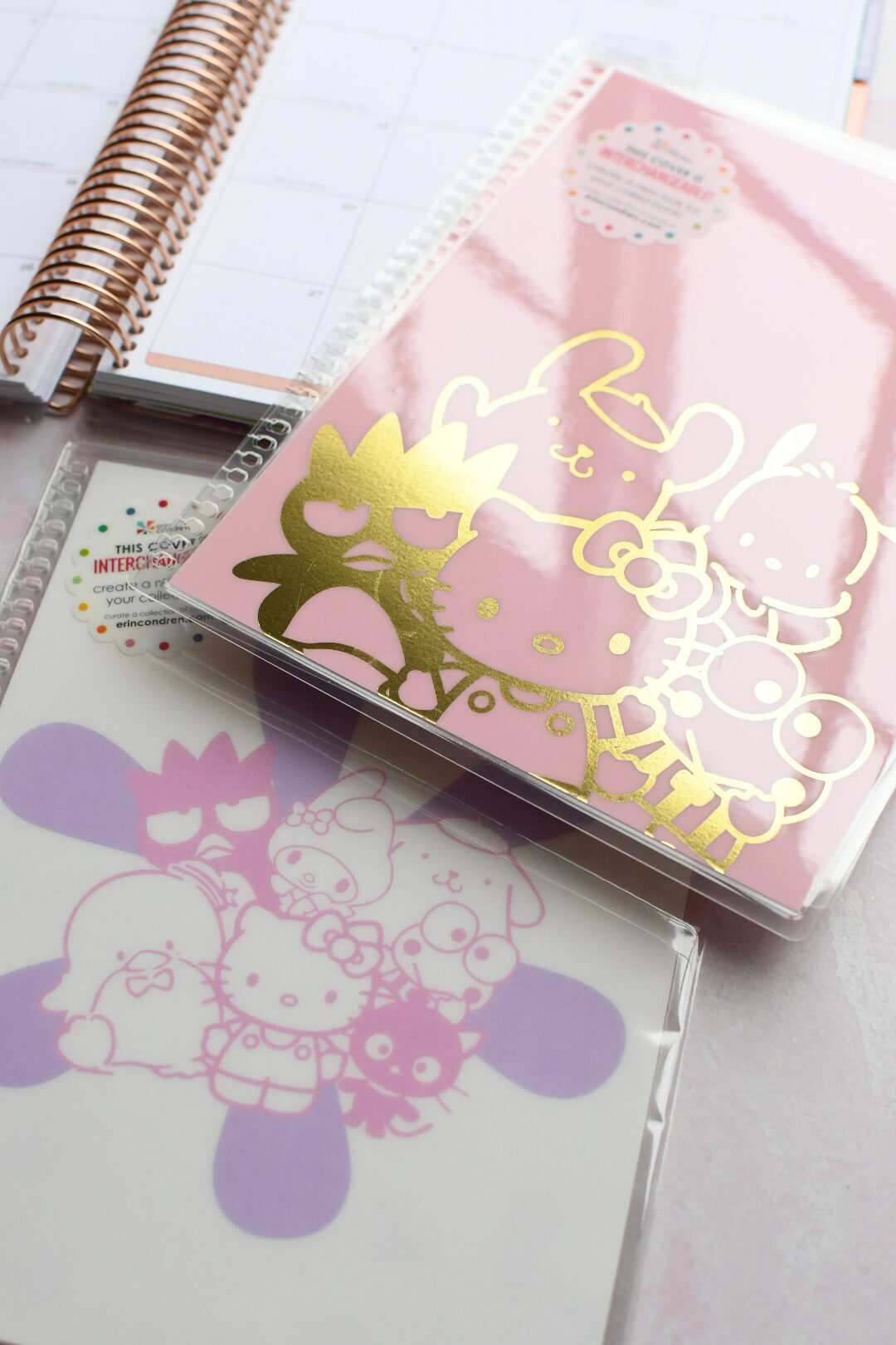Revealing The NEW Hello Kitty Collection From Erin Condren